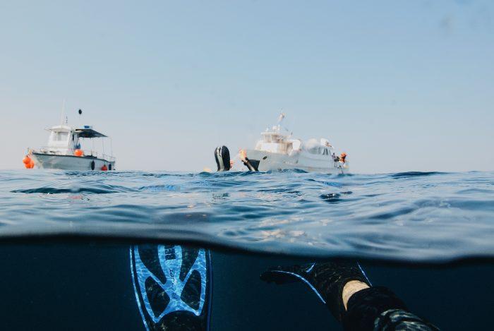 Snorkeling dalla barca, attività in barca a motore